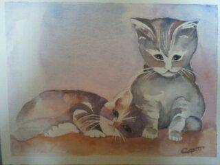Chatons joueurs